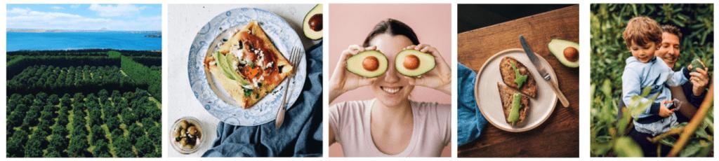 NZ Avocado promotions update